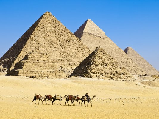 Trail of camels led by two drivers travels along in front of Pyramids of Giza.