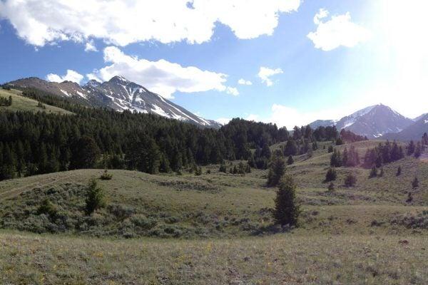 Mahogany Valley near Borah Peak Idaho