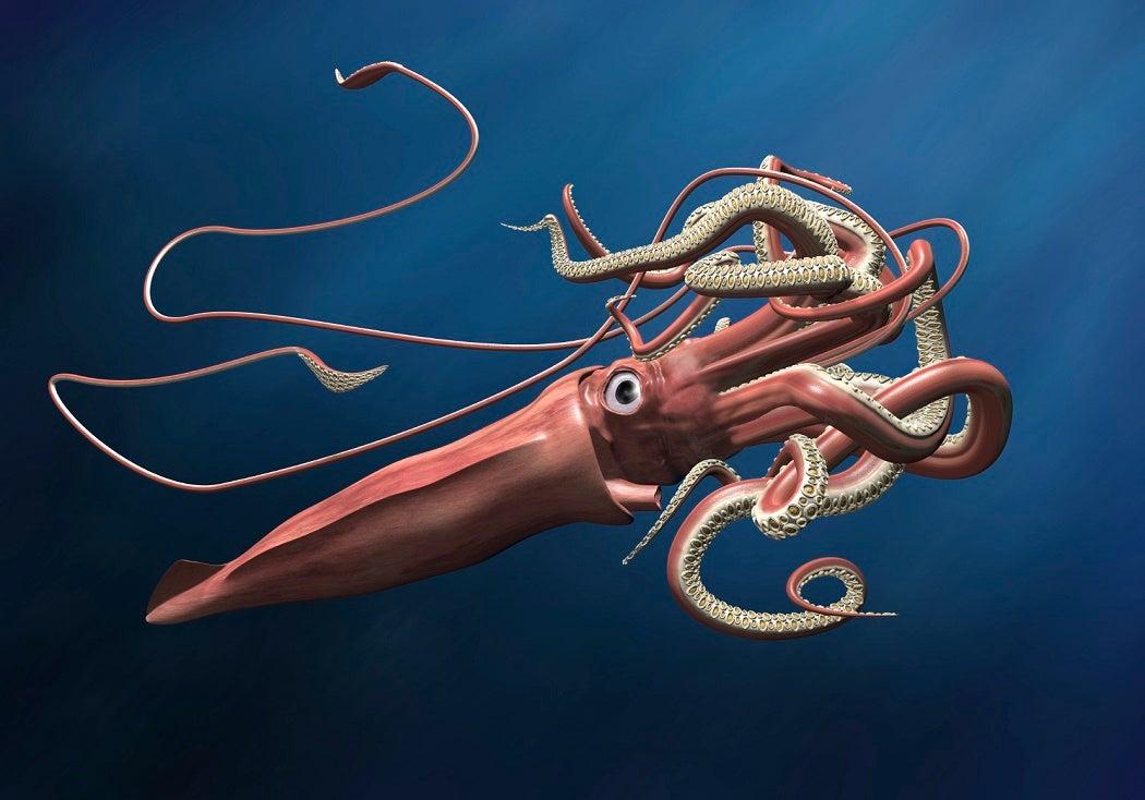 Giant squid lurking in the depths of a deep, dark ocean