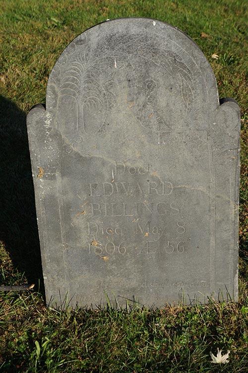 the genealogy factor graveyards gravestones jstor daily