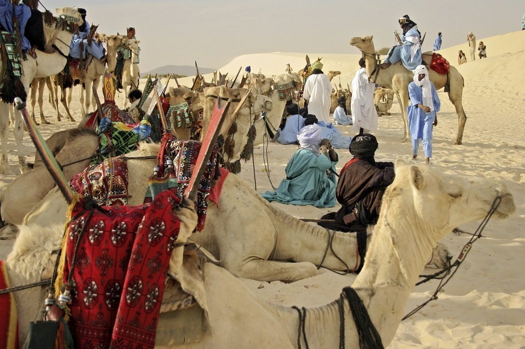 the city of timbuktu environmental sciences essay Learn environmental science with free interactive flashcards choose from 500 different sets of environmental science flashcards on quizlet.
