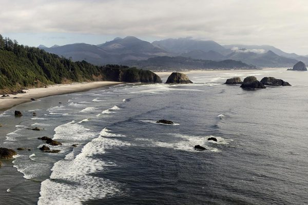 """OregonCoastEcola Edit"" by Cacophony edit by Noodle snacks - Own work. Licensed under CC BY-SA 3.0 via <a href=""https://commons.wikimedia.org/wiki/File:OregonCoastEcola_Edit.jpg#/media/File:OregonCoastEcola_Edit.jpg"" target=""_blank"">Wikimedia Commons</a>"