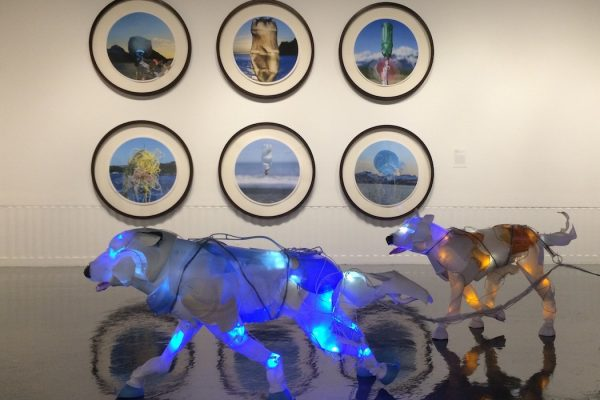 Gyre installation featuring Andy Hughes' and Cynthia Minet's work