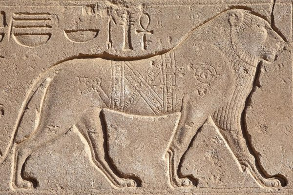 Lion hieroglyphs