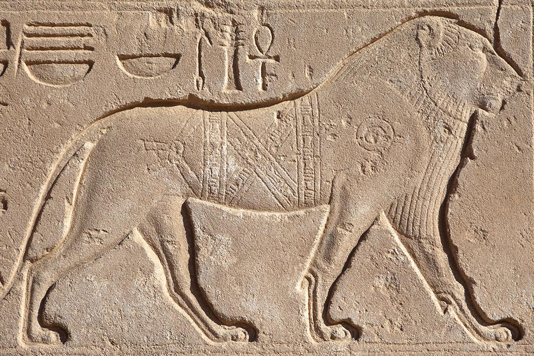 https://daily.jstor.org/wp-content/uploads/2015/11/AncientEgyptianZoos_1050x700.jpg