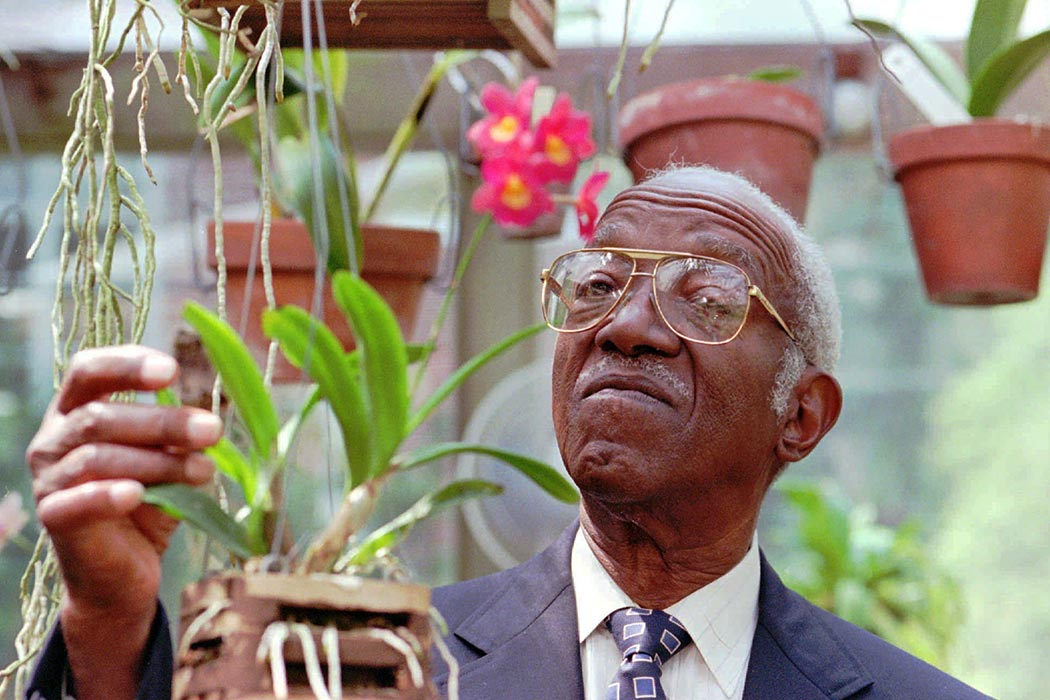 John Hope Franklin, who heads President Clinton's Commission on Race Relations, works with orchids in his backyard greenhouse, in Durham, N.C., on Aug. 25, 1997. (AP Photo/Grant Halverson)