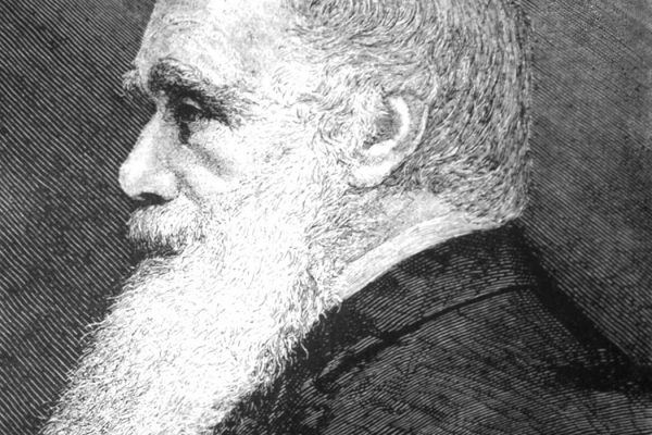 charles darwin persuasive Charles darwin theory of evolution essay - stop receiving unsatisfactory marks with these custom term paper recommendations 100% non.