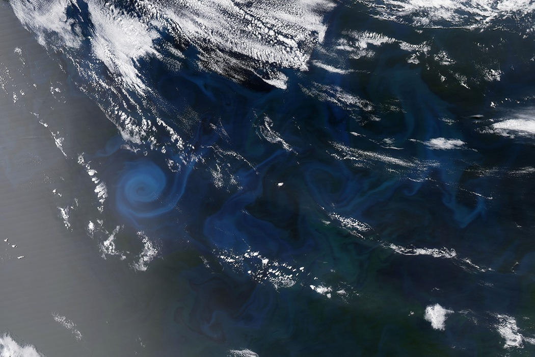 Spiral of Plankton in Indian Ocean
