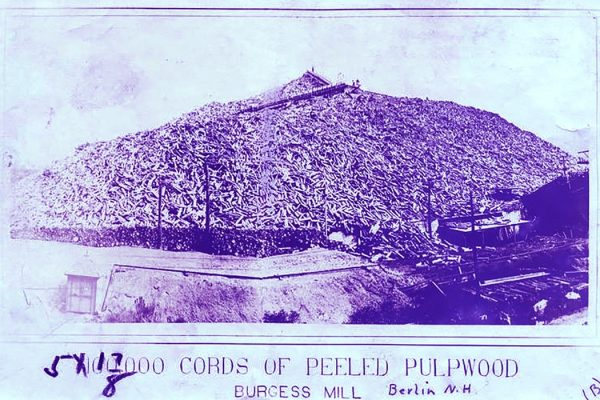 Woodpulp pile