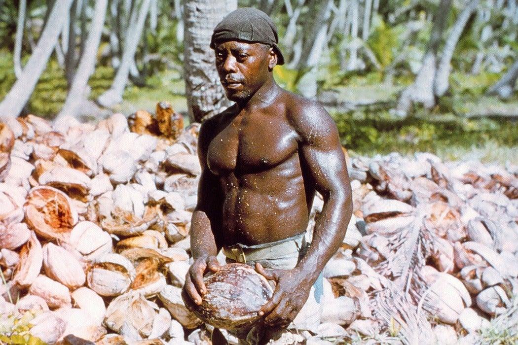 Chagos Islander