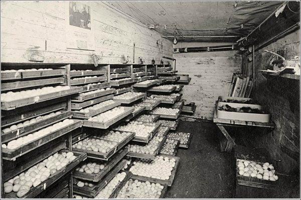 Hastings Muskogee Hatchery 1911