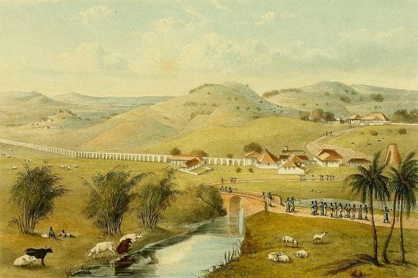 Jamaican plantation