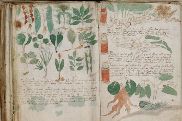 Pages from the Voynich Manuscript