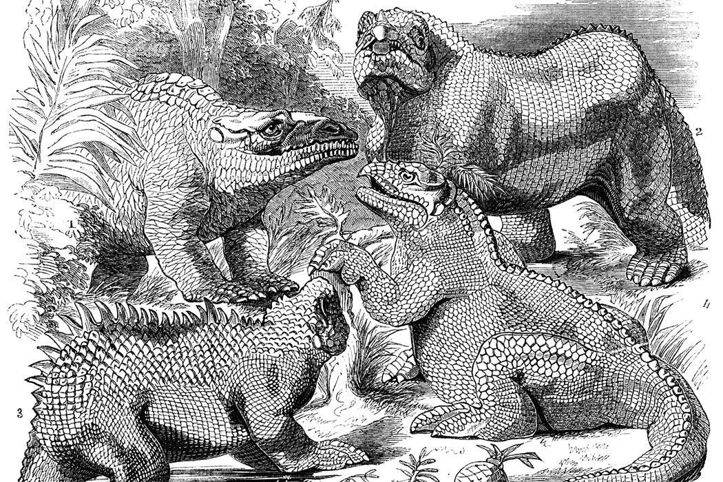 Iguanodons, Megalosaurus and Heliosaurus