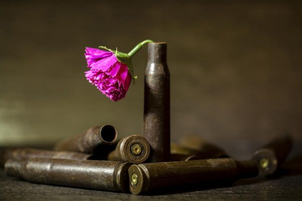 rose and bullets