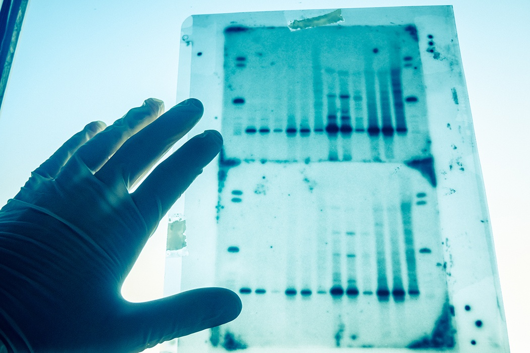 After 41 years, DNA from genealogy database leads to