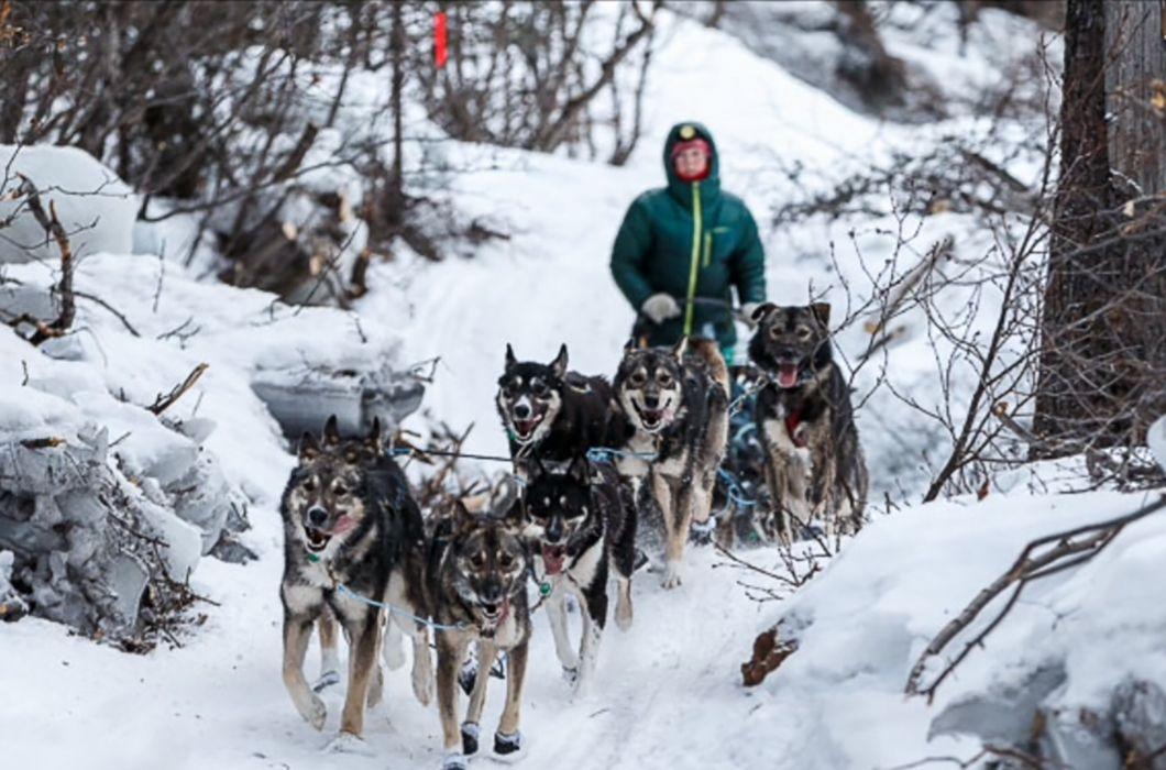 Breaking Trail at the Iditarod, Alaska's 1,000-Mile Dog ...