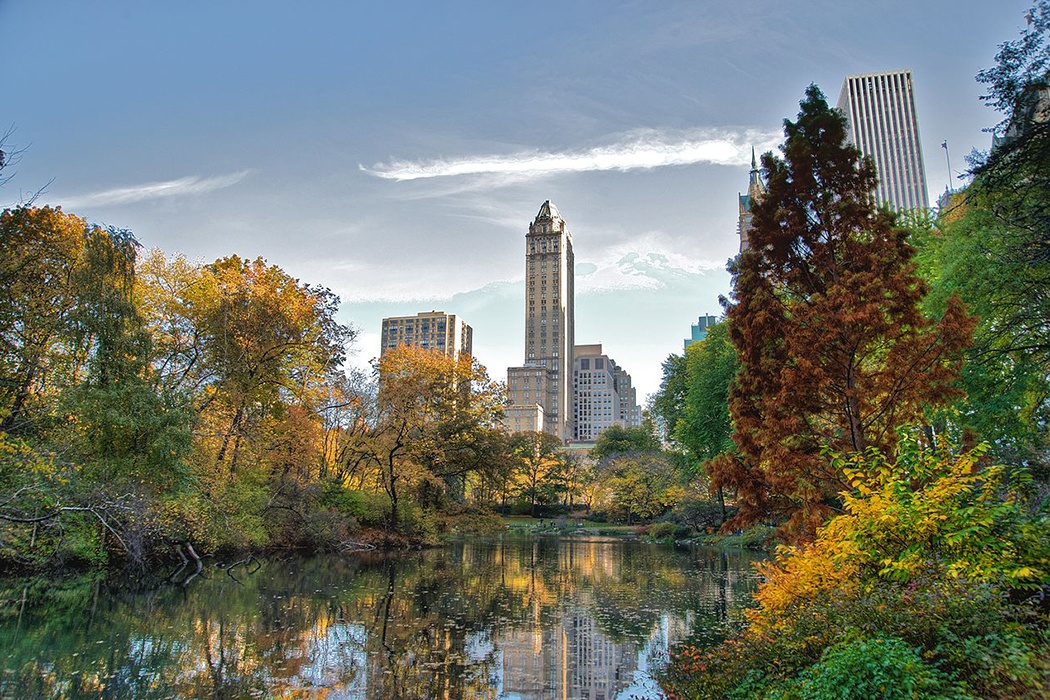 Central Park Olmsted