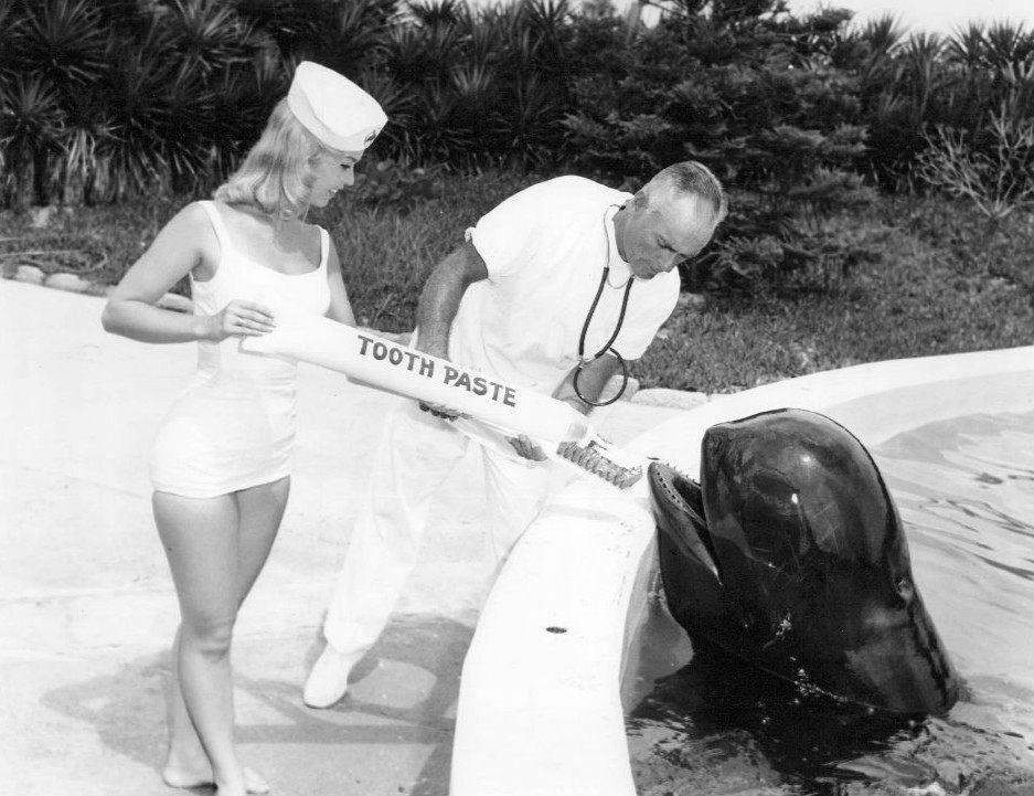 Marineland whale toothpaste