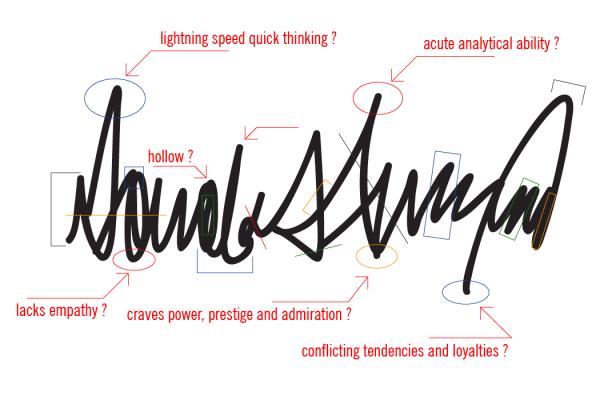 Trump signature analysis