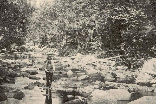 Fishing Victorian