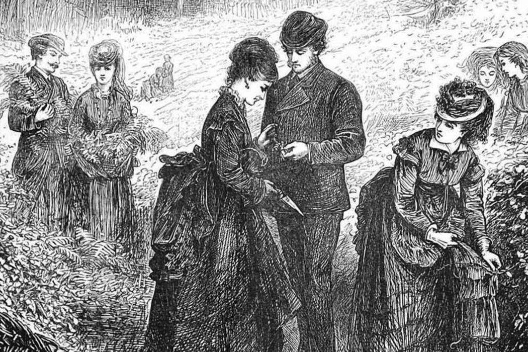 Victorian fern gatherers