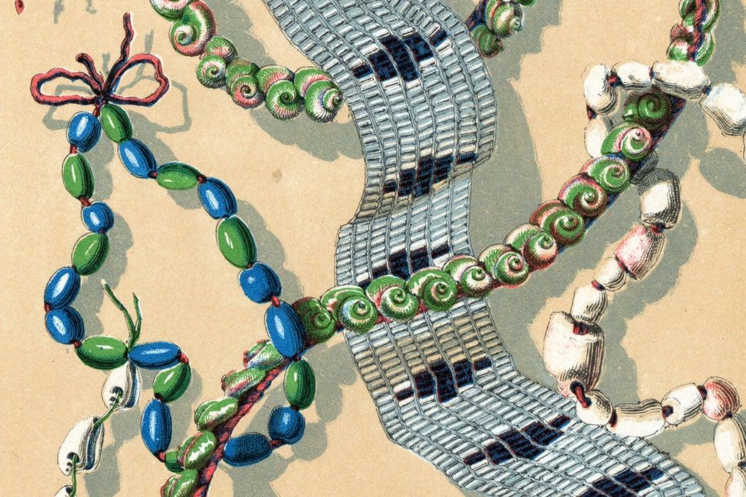 Wampum illustration