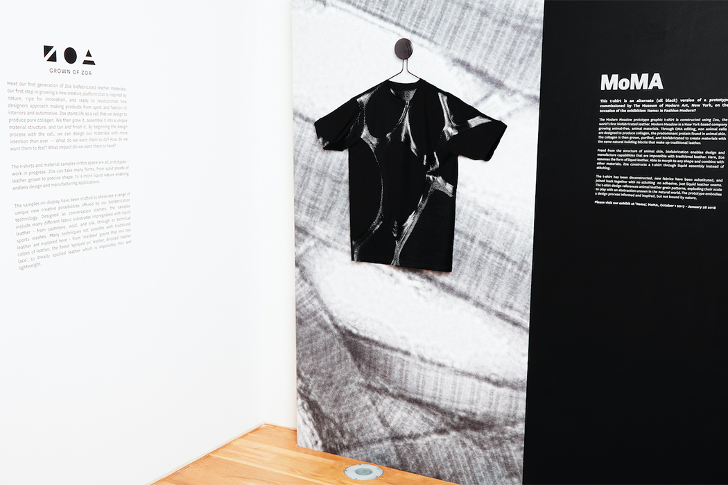 Zoa T-shirt in MoMa