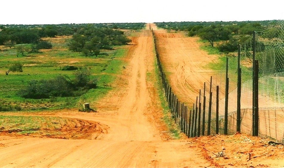 Dingo fence portion