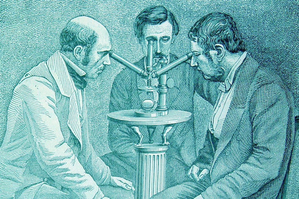 UNDER VICTORIAN MICROSCOPES, AN ENCHANTED WORLD