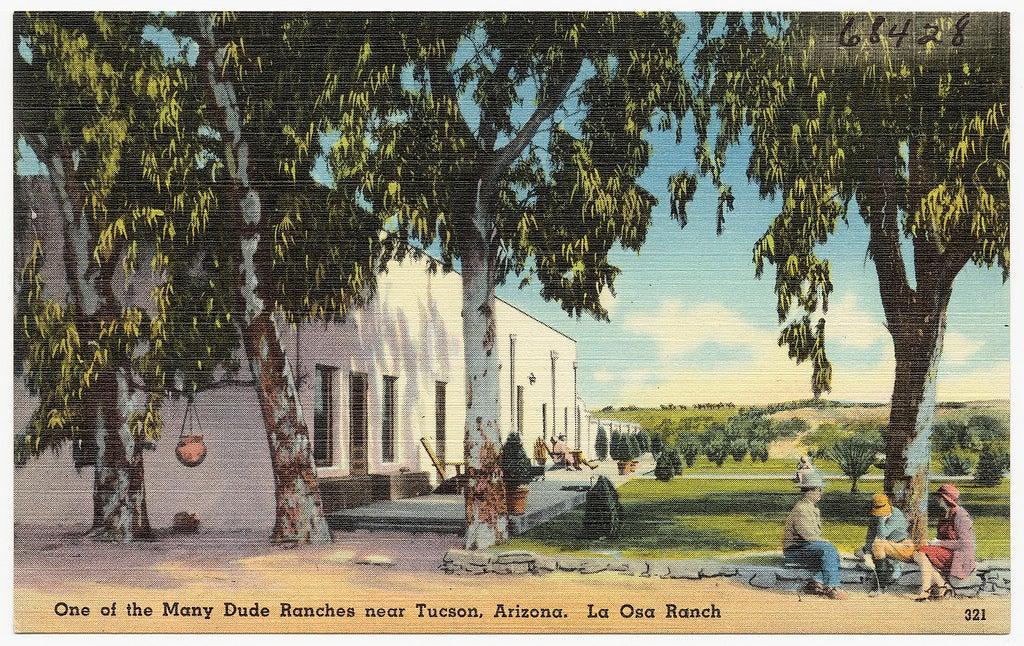 Dude Ranch Postcard