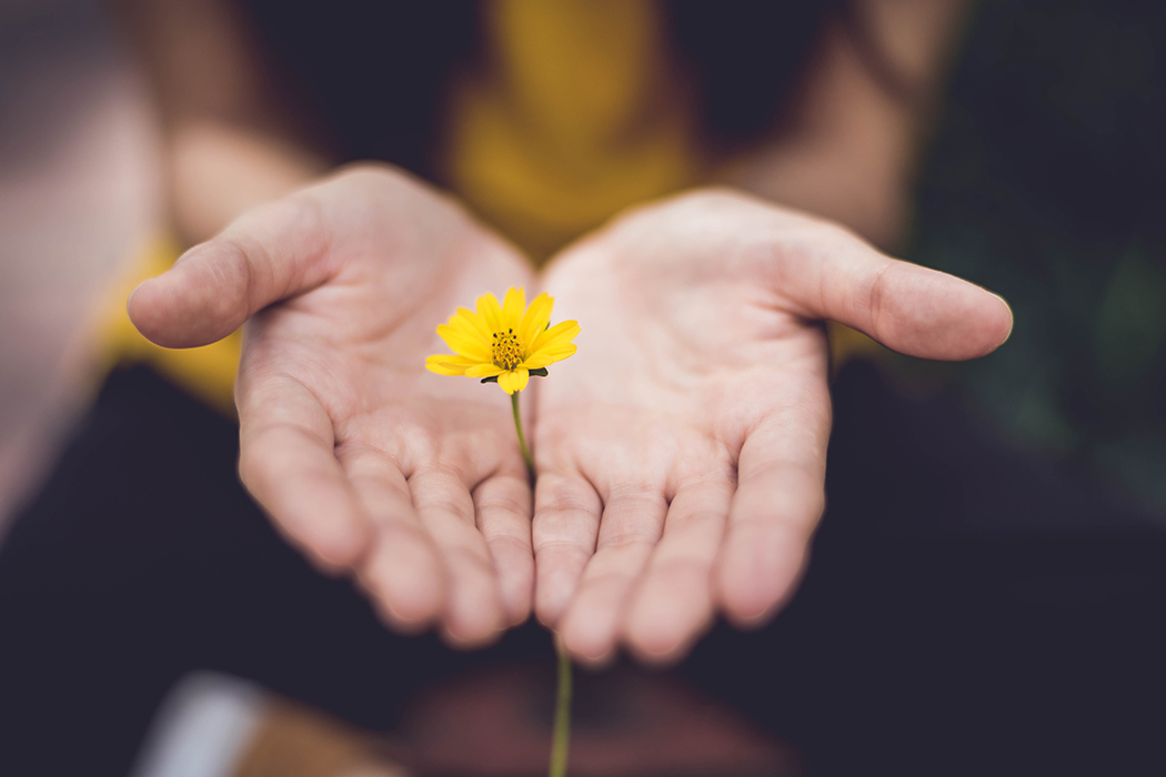 Forgiveness flower