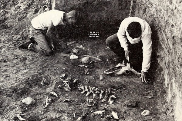 River Basin archaeologists