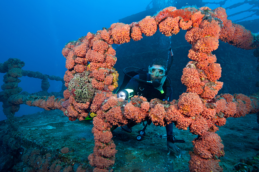 Scuba diver on shipwreck