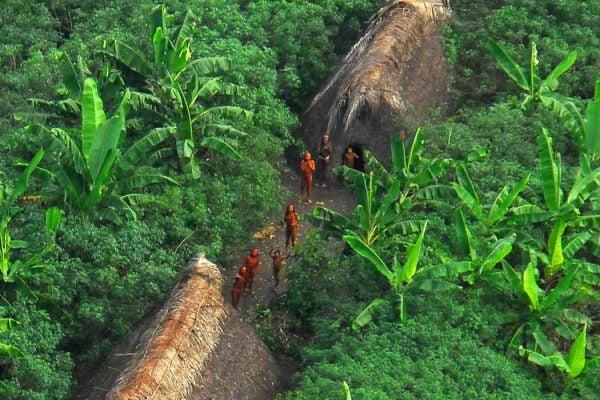 indigenous people brazil