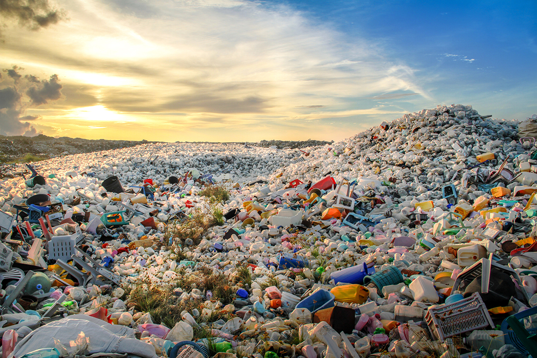 Where are the Biodegradable Alternatives to Plastic? | JSTOR Daily