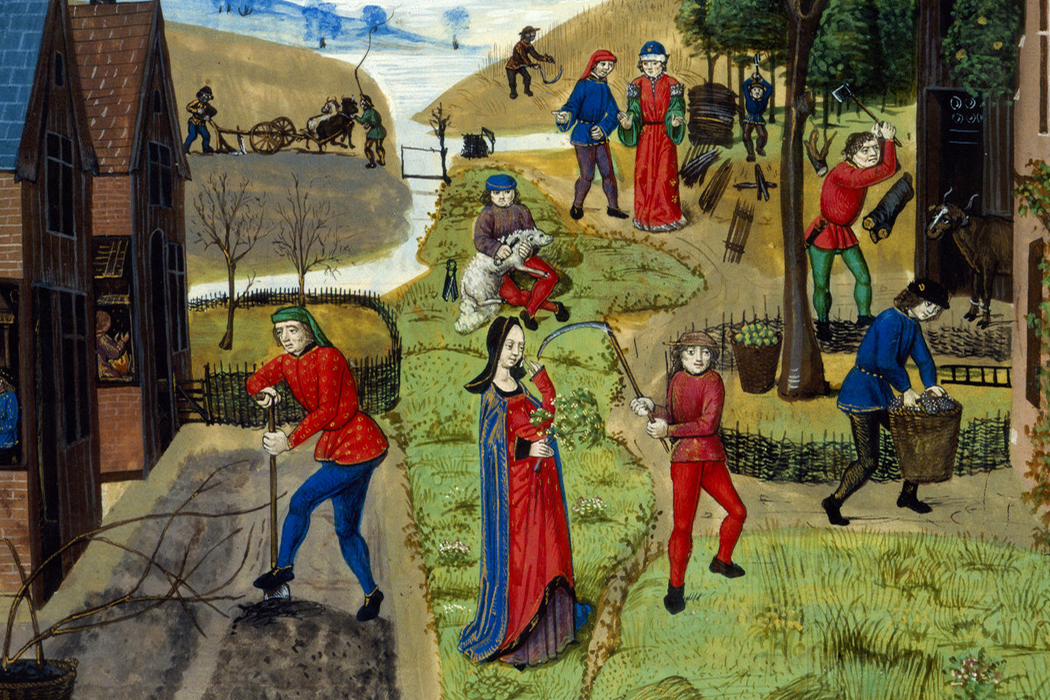 Image from Livre des profits ruraux (late 15th century France)