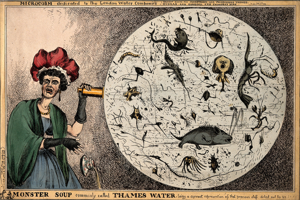 A woman dropping her tea-cup in horror upon discovering the monstrous contents of a magnified drop of Thames water