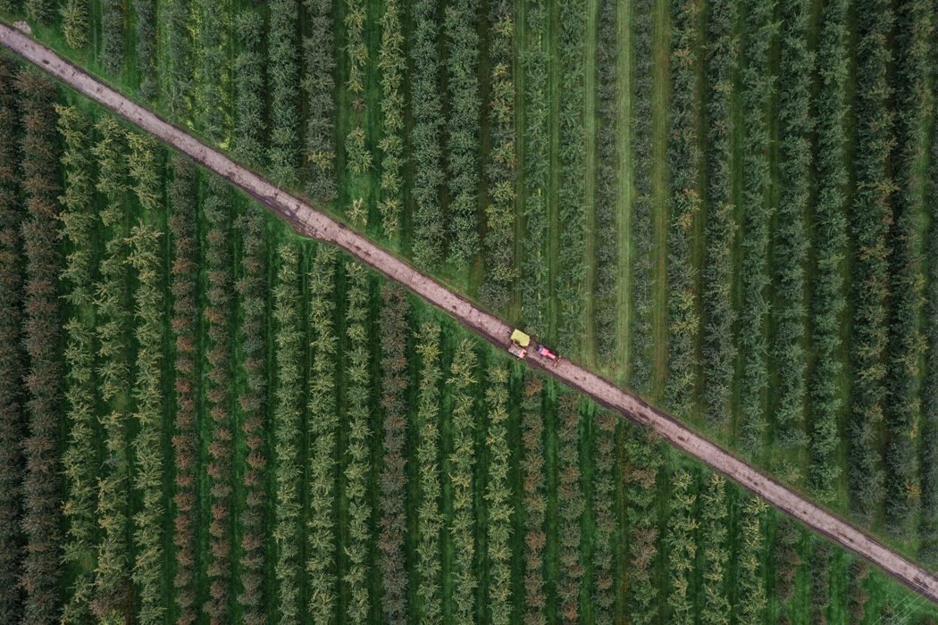 A birds-eye view of a farm.