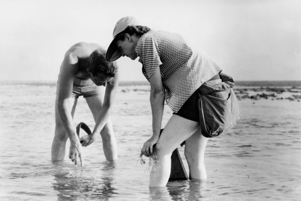 Rachel Carson Conducts Marine Biology Research with Bob Hines