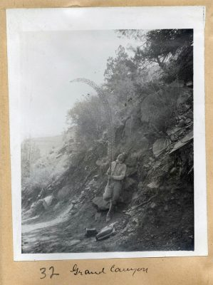 Photograph taken by Mary Agnes Chase or A. S. Hitchcock, documenting field work in the Grand Canyon