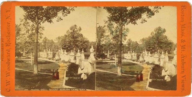 Hazel Dell, Mt. Auburn cemetery