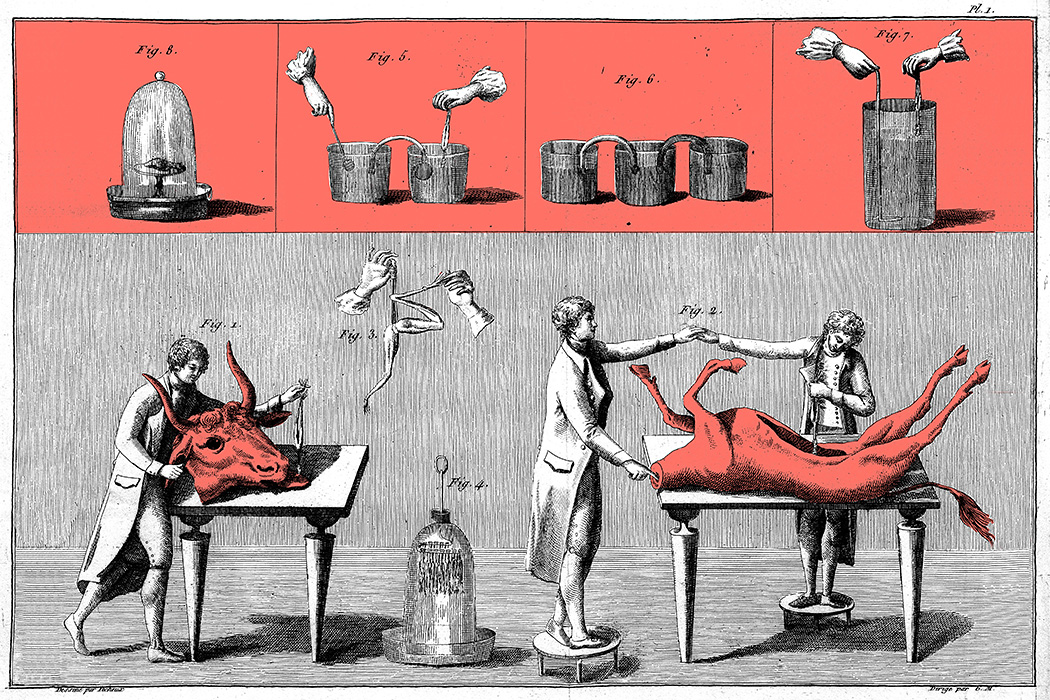Source: https://commons.wikimedia.org/wiki/File:Giovanni_Aldini,_Essai...sur_le_galvanisme..._Wellcome_L0023892.jpg