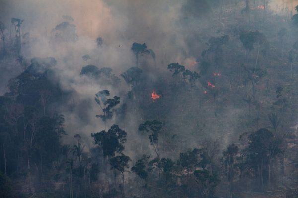 A fire burns in a section of the Amazon rain forest on August 25, 2019 in the Candeias do Jamari region near Porto Velho, Brazil