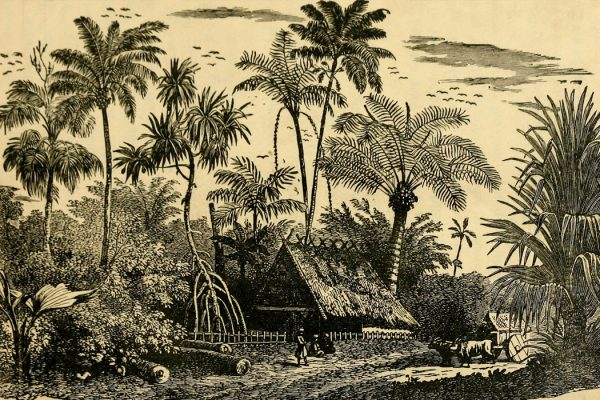Scene in The Bahamas, 1884