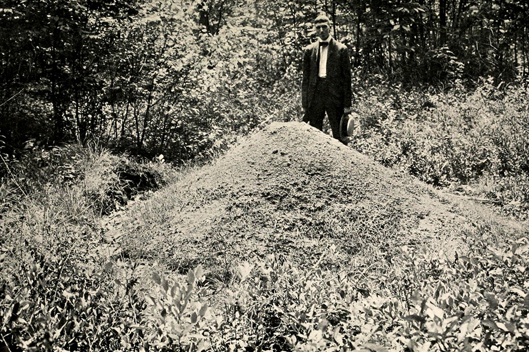 A man standing before a large ant hill