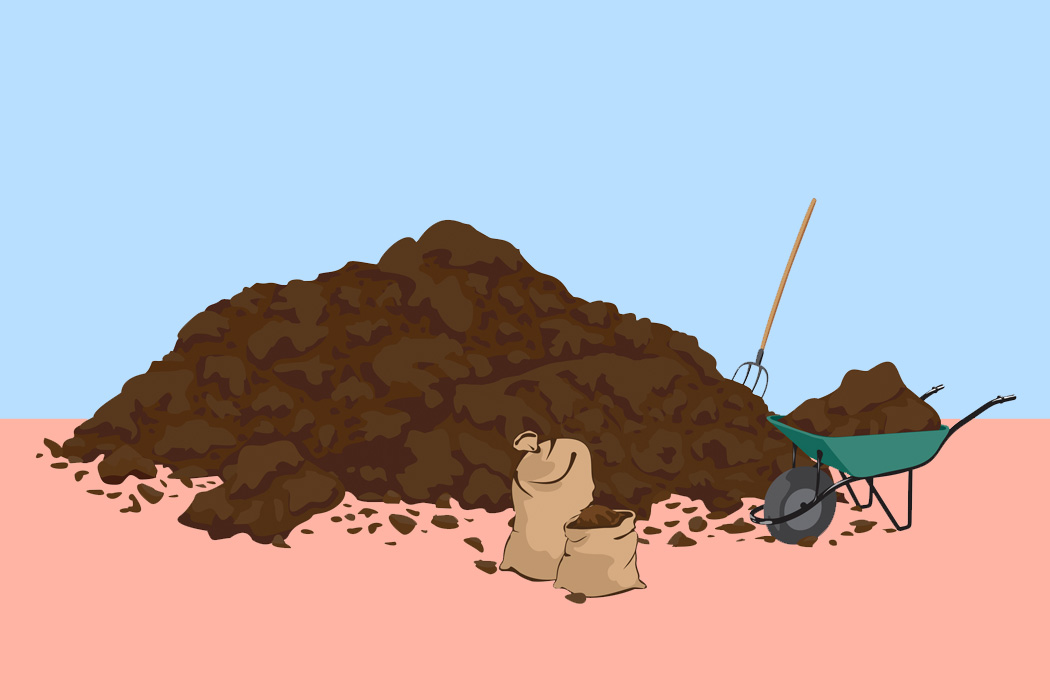 A pile of manure for fertilizing crops