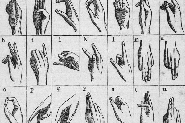 Illustrated chart from the late 19th Century