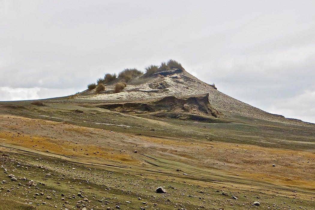 Shell midden near Te Kaha Pt