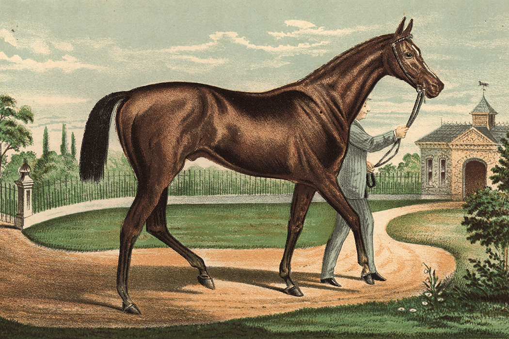 1881: Champion racehorse Iroquis, winner of the 1881 Derby under Fred Archer and property of P Lorillard.